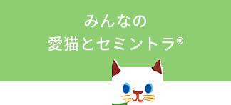 みんなの愛猫とセミントラ(R)